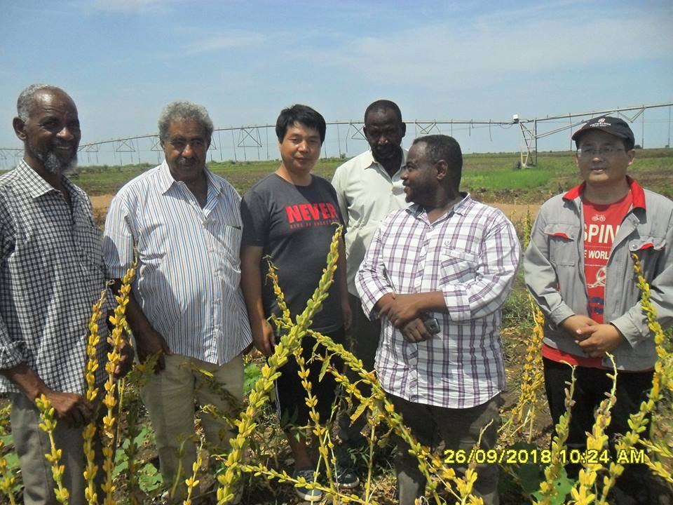 Sudanese Chinese Center for the transfer of agricultural technologies