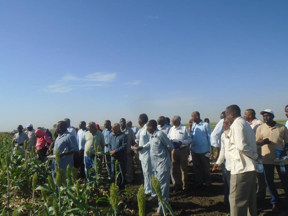 Gadaref Research Station Field Day